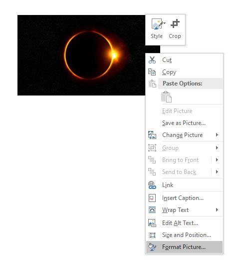 Format Picture drop-down menu